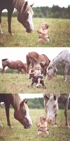baby portraits with horses