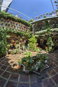 Patio de la calle Agustín Moreno, 43.- Este patio, en cuyo centro hay una fuente de forma estrellada, es una muestra más de lo que a lo largo de los siglos se ha mostrado como arquitectura típica cordobesa.