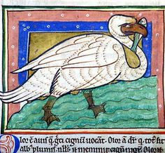 Bestiary, MS M.81 fol. 49v - Images from Medieval and Renaissance Manuscripts - The Morgan Library & Museum