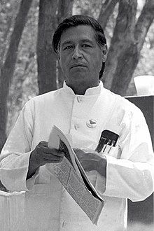 Cesar Chavez was an American farm worker, labor leader and civil rights activist, who, with Dolores Huerta, co-founded the National Farm Workers Association. Cesar Chavez Day, American Prayer, Aziz Ansari, Mikhail Baryshnikov, Janet Leigh, Civil Rights Activists, Judi Dench, James Joyce, Socialism