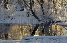 "Buy the royalty-free Stock image ""White snow and reflections on winter pond"" online ✓ All image rights included ✓ High resolution picture for print, web. High Resolution Picture, Finland, Pond, Reflection, Stock Photos, Winter, Pictures, Outdoor, Image"