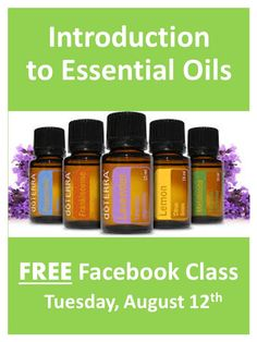 TONIGHT-- Join us to learn how you can use essential oils to naturally address your family's health concerns, reduce toxins, manage mood, and more. This is an interactive session-- discussion and questions encouraged. Class is at 7pm Central time (8PM Eastern and 5PM Pacific) on Tuesday, August 12th. Click here to register for this free class: https://www.facebook.com/events/684224701614457/