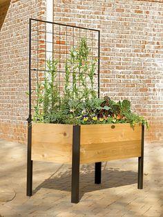 Elevated Cedar Planter Box and Space-Maker Pivoting Trellis Set, 2' x 4'