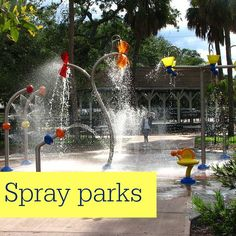 Staycation: Inexpensive Things to do in Tampa Bay Florida - Not Consumed