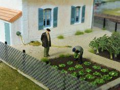 Image Train Info, Train Miniature, Ho Scale, Models, Classic Toys, Model Homes, Model Trains, Planting Flowers, Scenery