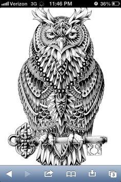 Owl by Ben Kwok
