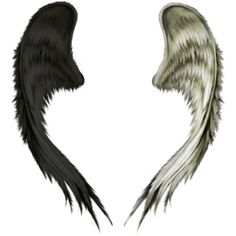 Angel Wings ❤ liked on Polyvore featuring wings, fillers, backgrounds, other, extra, doodle and scribble