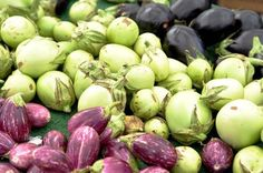 Eggplants: Choose eggplants that have smooth, naturally shiny skin and feel heavy for their size. When gently pressed, flesh that gives slightly and then bounces back indicates ripeness. Unripe flesh will not give, while overripe flesh will remain indented. Also, smaller eggplants tend to have fewer seeds and be less bitter.