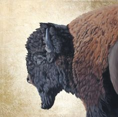 """Power of One"" - Buffalo painting with gold leaf background. #buffalo"