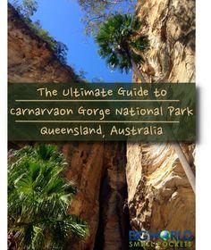 The Ultimate Guide to Carnarvon Gorge National Park, Queensland, Australia {Big World Small Pockets}
