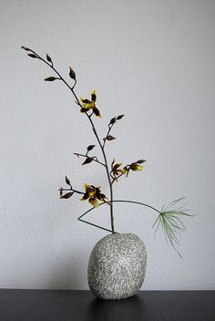 Ikebana 'Helping out' by Otomodachi, via Flickr