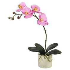 This Vickerman artificial lavender orchid arrangement is the perfect piece to complete your décor. This arrangement features an orchid plant with 4 lavender blossoms in a round white ceramic container. It measures 20 inches tall.