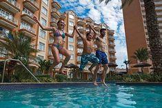 World Hotel Finder - Divi Aruba Phoenix Beach Resort Divi Resorts, Aruba Hotels, Hotel Finder, Caribbean Vacations, Around The Worlds, Phoenix, Flight Deals, Beach, Travel