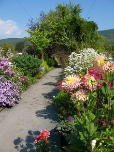 Can't wait until it is summer and the flowers are at peak o the Bridge of Flowers, Shelburne Falls  #massachusetts #travel