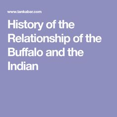 History of the Relationship of the Buffalo and the Indian