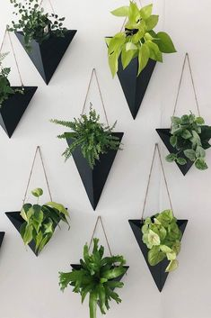 Black Wall Sconces For Your Plants ★ Modern and unique wall planter pots made of plastic, ceramic, and metal to decorate your walls with. wall 18 Incredible Wall Planter Pots For Devoted Plant Fans Wall Plant Hanger, Plant Wall Decor, House Plants Decor, Wall Plant Pot, Diy Planters, Planter Pots, Metal Wall Planters, Black Planters, Large Planters
