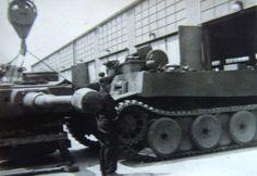 Tiger im Focus - Prototypen - Versuchsfahrzeuge - Tests