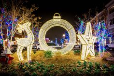 Decorate your city's parks, lifestyle centers and properties with our giant Light displays. Here we have our Regal Illuminated Deer, Ring and Star.