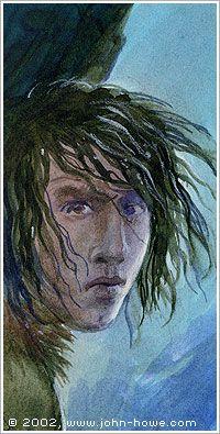 The Tawny Man Book 3: Fool's Fate - Swift