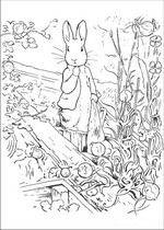 beatrix potter coloring pages - Google Search