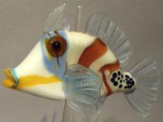 Picasso trigger fish - Deb Crowley