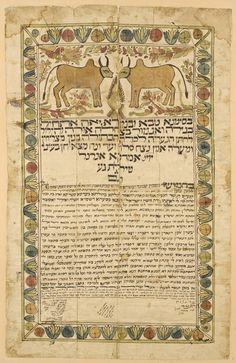 """[כתובה. יזד, איראן, תרי""""ח] Ketubah, Yazd, Iran 1858, Brahman cows!"""