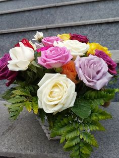 Fall Flowers, Autumn, Rose, Plants, Collection, Autumn Flowers, Pink, Fall Season, Fall
