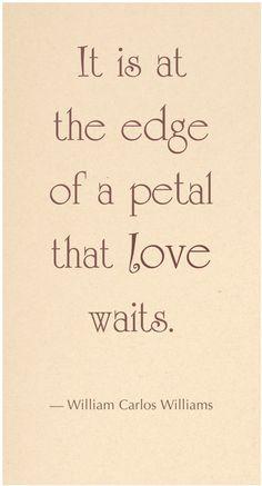 love William Carlos Williams...a true romantic
