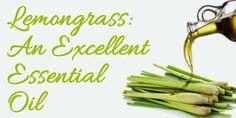 18 Reasons I Love Lemongrass Essential Oil