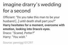 drarry's wedding