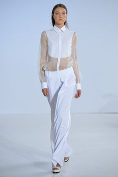 Philosophy Spring 2014 Ready-to-Wear Collection Slideshow on Style.com
