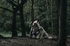 Goats, Wolf, Horses, Animals, Animales, Animaux, Wolves, Animal, Animais