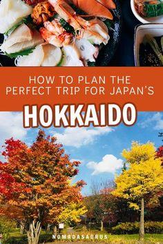 How To Plan Your Perfect Hokkaido Itinerary - NOMADasaurus Adventure Travel Blog
