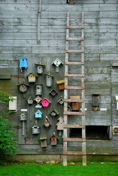 Another inspiration for the birdhouse wall