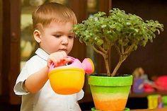 Комнатные растения для детской / Моё счастье