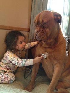 Trust Me, Im a Doctor