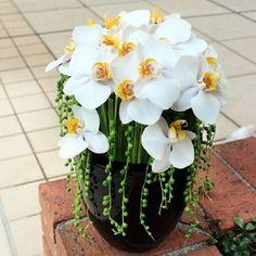 Diseño floral Contemporáneo