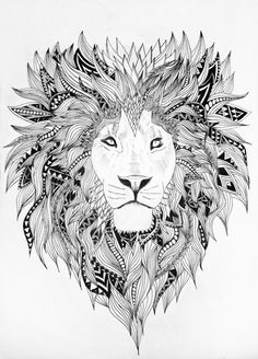 Sketch: Lion by Emel Mutlucan, via Behance