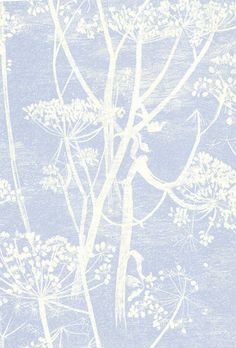 Cole & Son - New Contemporary - Cow Parsley 66-7050 HR wallpaper from Walnut