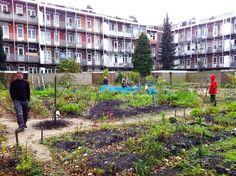 architecture community garden - Cerca con Google