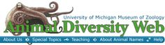 Wow!!  I wish I had discovered this sooner!  Animal Diversity Web is an online database of animal natural history, distribution, classification, and conservation biology at the University of Michigan. Animal Diversity Web Has;  Thousands of species accounts about individual animal species. These may include text, pictures of living animals, photographs and movies of specimens, and/or recordings of sounds,   Descriptions of levels of organization, and resources for teachers.