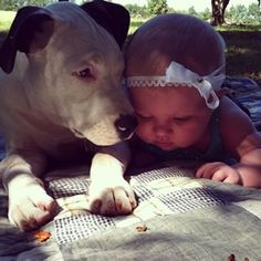 Clyde (and Eisleigh) | The 20 Most Adorable Animal Instagrams You Loved In 2014