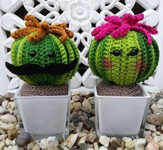 """De creatieve wereld van Terray: """"Meneer en Mevrouw Cactus"""""""