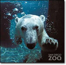 The San Diego Zoo... just thinking about this makes me smile! -DONE