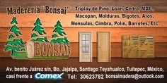Maderería Bonsai