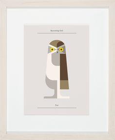 Burrowing Owl- Josh Brill
