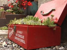 Turn old tool boxes into patio planters. Find more ideas for upcycling household junk into unique garden containers >> http://www.diynetwork.com/how-to/outdoors/gardening/12-unusual-and-upcycled-container-gardens-pictures?soc=pinterest