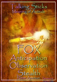 FOX Anticipation Observation Stealth