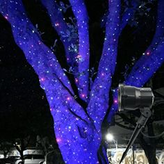 Poeland Outdoor Star Projector Lights Moving Starry Laser Christmas Lights RGB (Red Green Laser Dots and Blue Background Spotlight) Best Christmas Laser Lights, Christmas Light Projector, Christmas Light Installation, Hanging Christmas Lights, Holiday Lights, Outdoor Christmas, Christmas Fun, Holiday Decor, Outdoor Projector