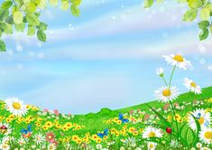 Kids Background, Studio Background Images, Borders For Paper, Borders And Frames, Flower Wallpaper, Wallpaper Backgrounds, Floral Backgrounds, Picture Story For Kids, School Board Decoration